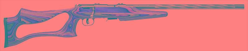Savage Arms Bolt 93R17-img-2